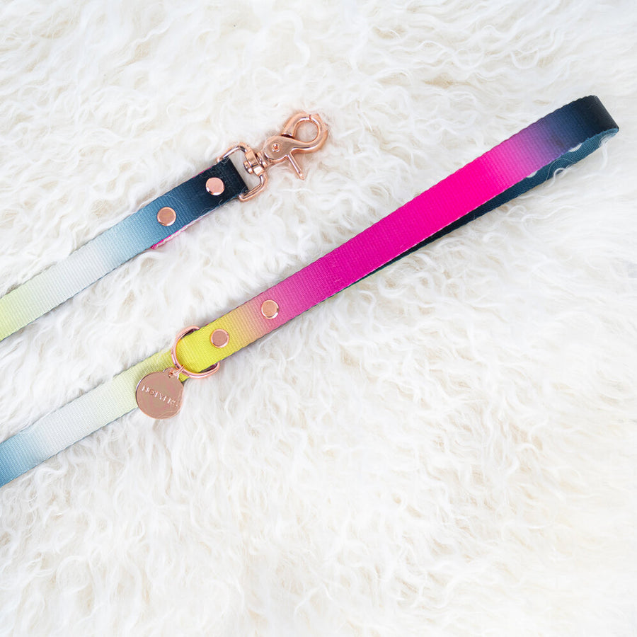 moon ombre dog leash by Notyers
