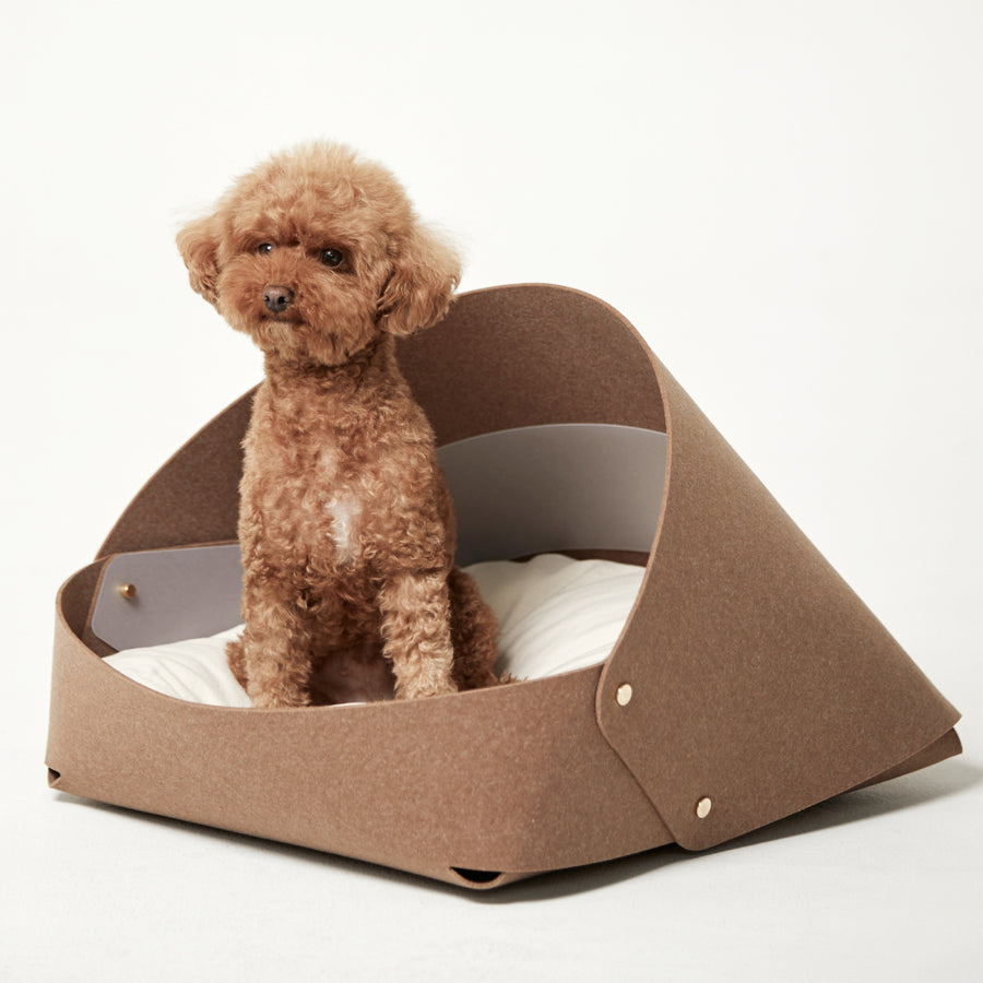 toy poodle inside bad marlon marron dog bed