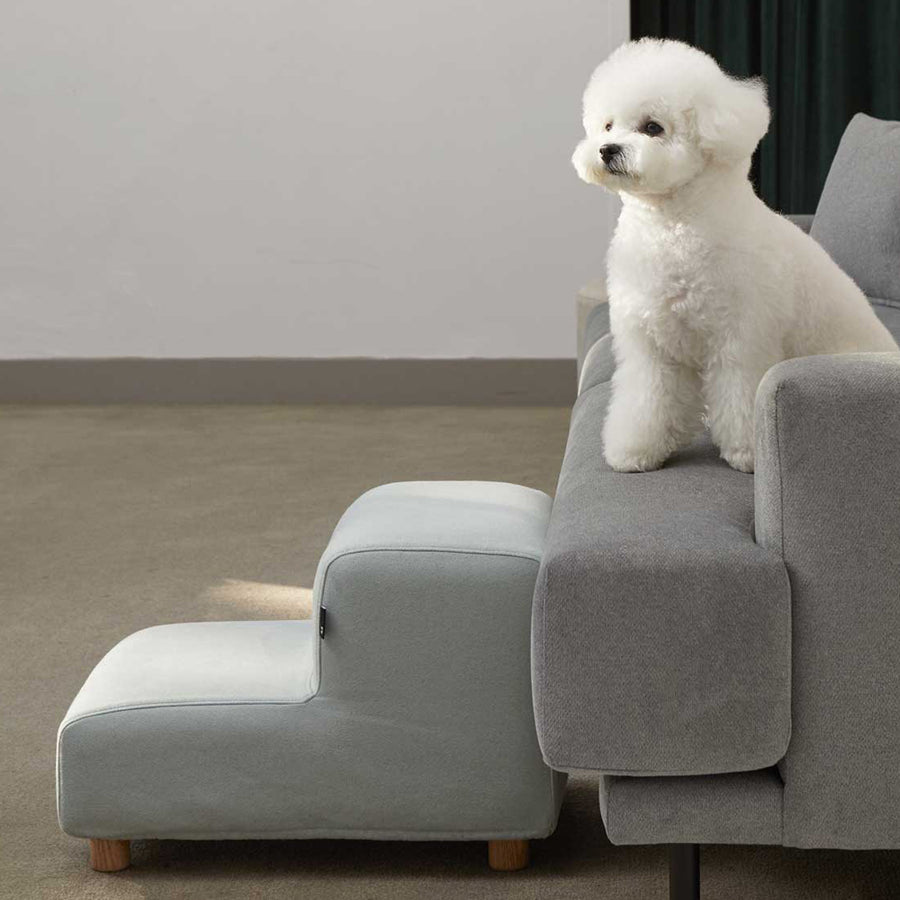 white dog with minimalist pet stairs furniture
