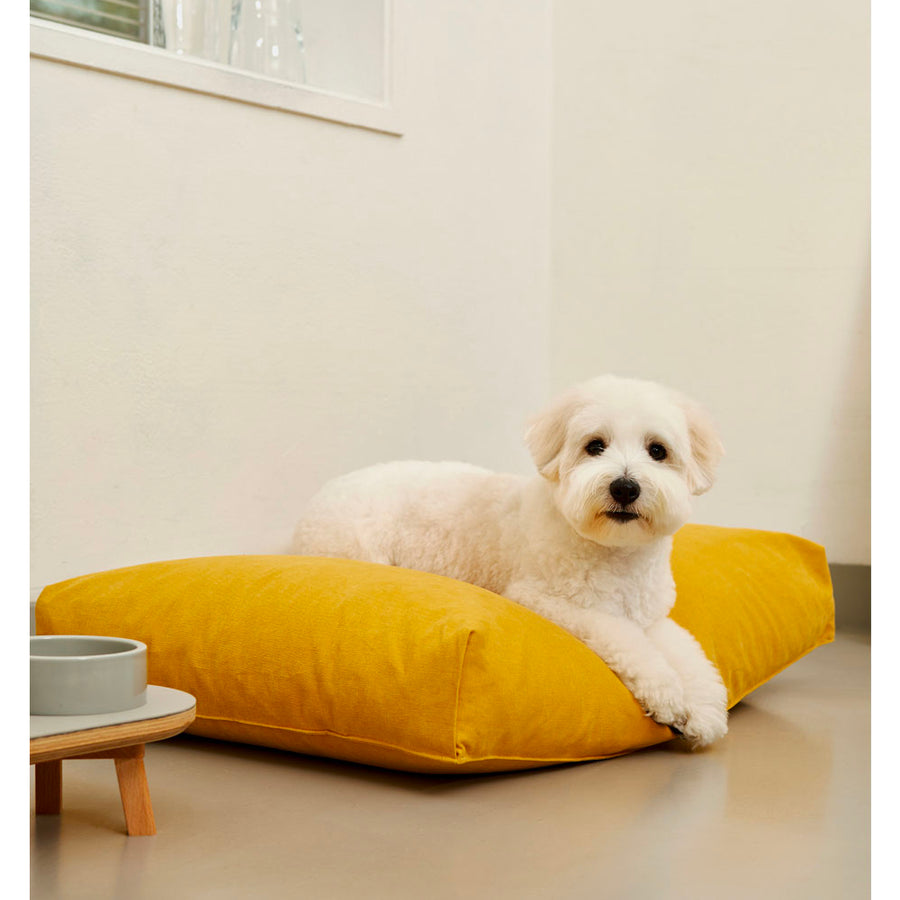 dog resting on minimalist microfiber simple cushion