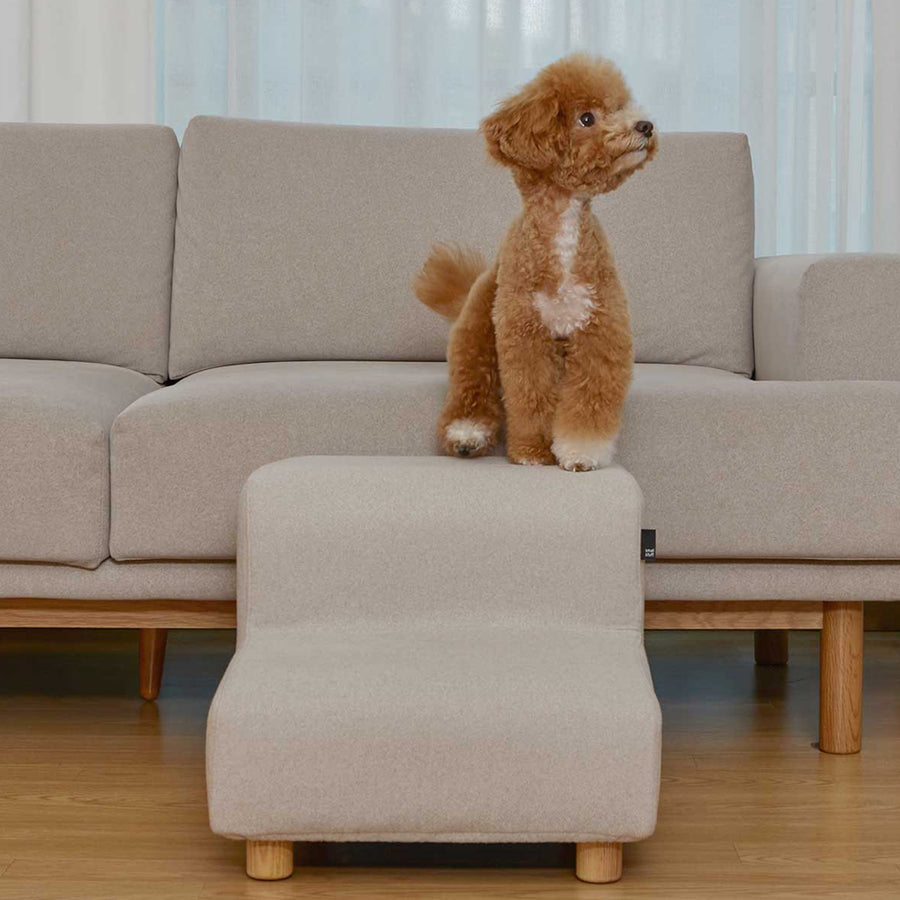 dog with minimalist pet steps furniture