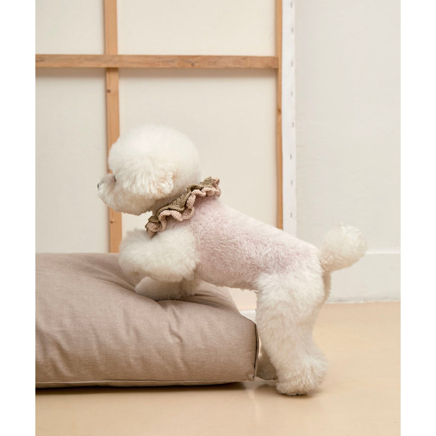 bishop stepping on to minimalist microfiber simple cushion dog bed