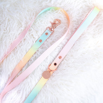 Sorbet Web Leash by Notyers