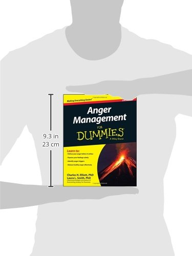 Anger Management For Dummies - Inmate Care Packages