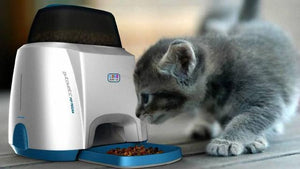 Going out on holidays, Automatic feeder to help you!