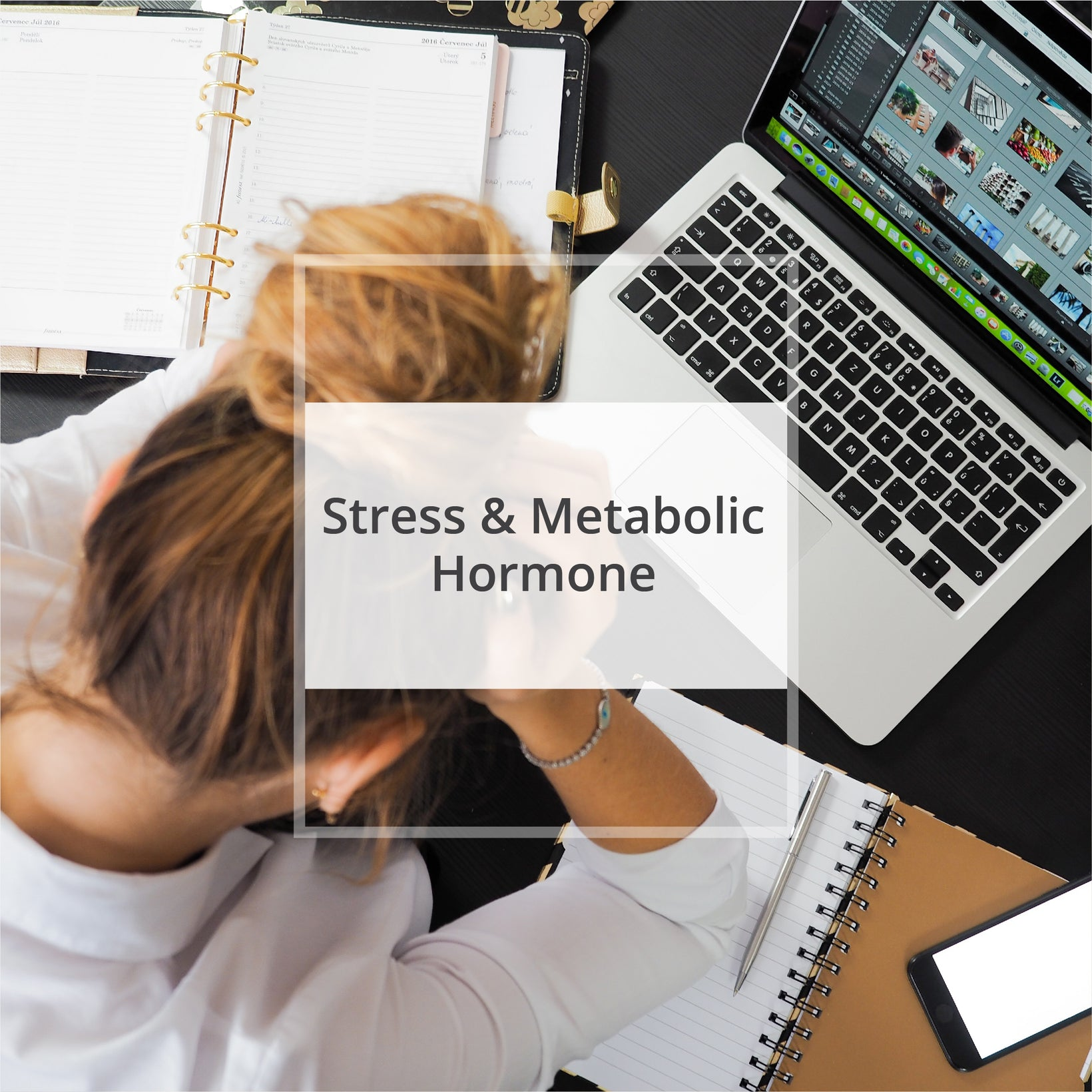 Stress & Metabolic Hormone (NEW)