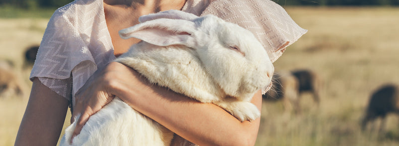 Why Shopping Cruelty Free Is Important