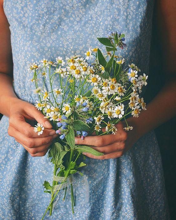 Why We Are Crazy For Chamomile And Its Skin Benefits.