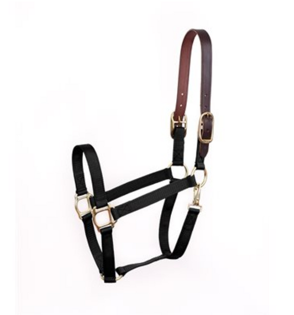 Safety Halter- Black
