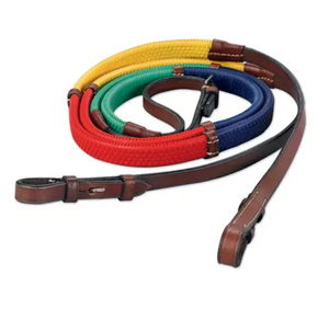 Rainbow Reins with Brown Leather
