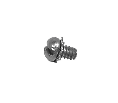 Zenith Carb Pump Lever Retaining Screw and Washer C140-47
