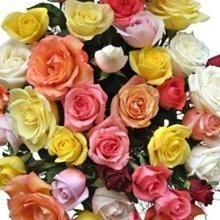 Assorted Colored Roses  - DIY flower Bunches - flowersbypouparina.com