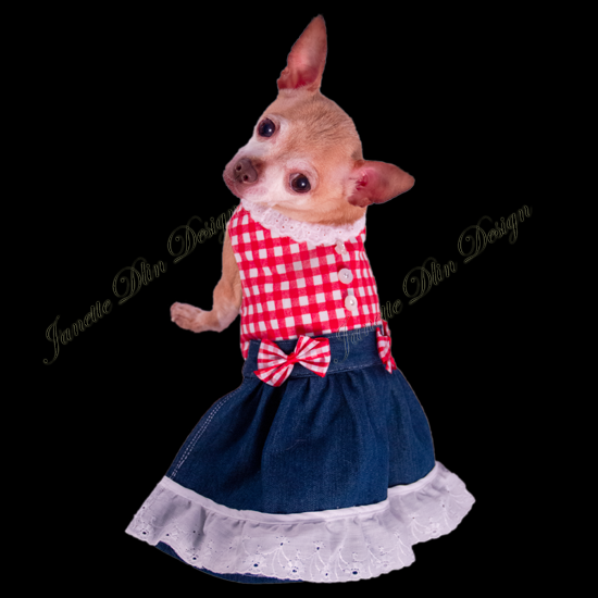 Red Gingham Dress-JanetteDlin Design