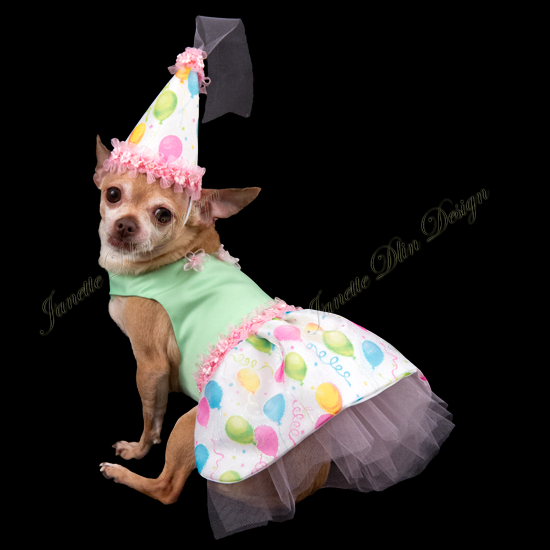 Happy Birthday to You Dress - Janette Dlin Design - Dog Dress