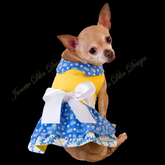 Spring Beauty Dress  - Janette Dlin Design - Dog Dress