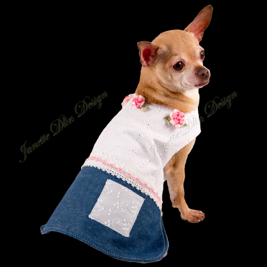 Spring Love Dog Dress  - Janette Dlin Design - Dog Dress