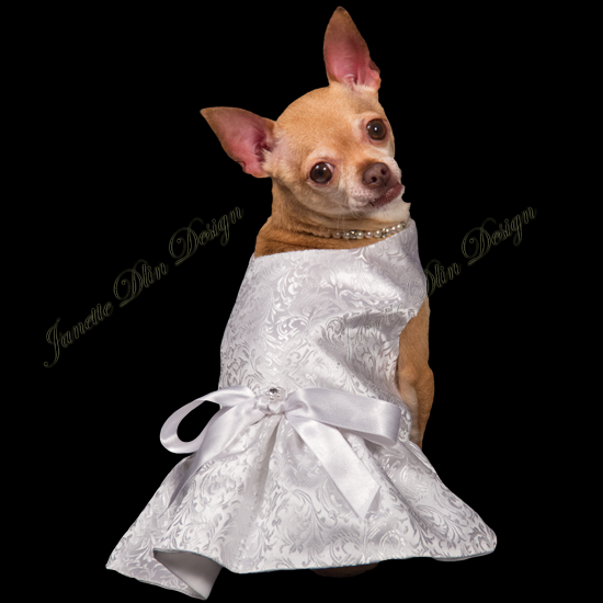 Dazzling White Dress - Janette Dlin Design - Dog Wedding Dress