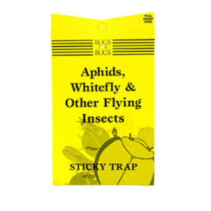 Bugs for Bugs Sticky Fly Trap 10 pack