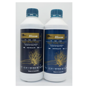 ISN Bloom Nutrient A&B 20L