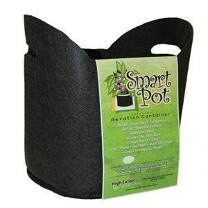 Smart Pots 5 Gallons Fabric Pots w/ Handles, 12 Inch