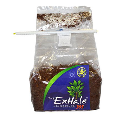 The ExHale 365 Homegrown Climate Control and CO2 Bag