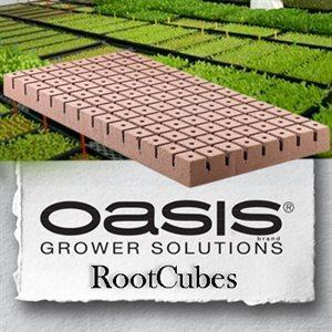 oasis-rootcubes-1-25-in-medium-cubes-5010-104-sheet