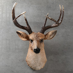 [MGT] American realistic deer head wall hanging animal head resin pendant home decoration store wall hanging, best gift