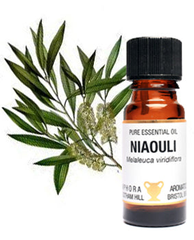 Niaouli Pure Essential Oil 10ml