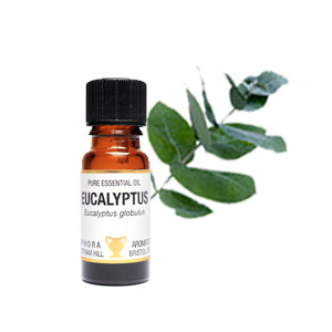 Eucalyptus Globulus Pure Essential Oil 10ml