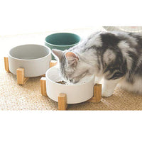 Bamboo Stand Food Dish
