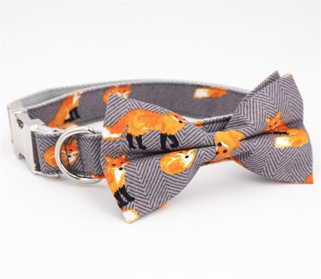 Fantastic Fox Collar + Leash Set