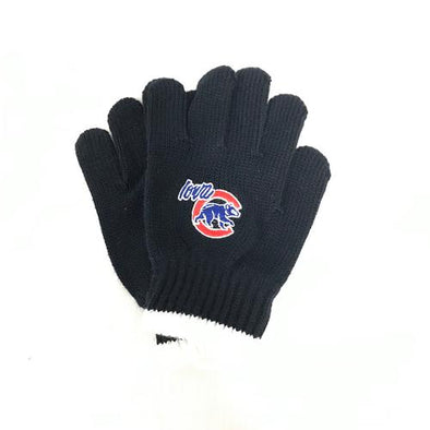 Iowa Cubs Youth Knit Gloves, Navy