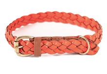 Load image into Gallery viewer, Windsor Pet Collar (Braided)