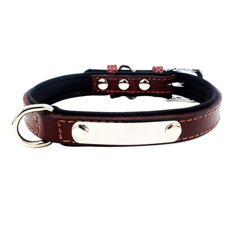 Personalized ID Leather Collar