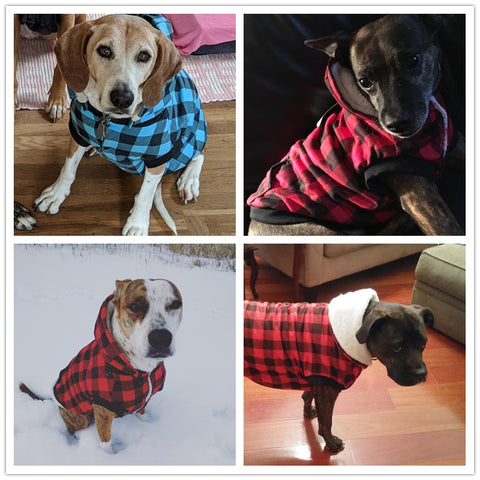 Classic Plaid Jacket