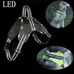 LED Nylon Flashing Light Dog Harness