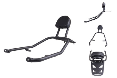 T-rex 2018 - 2019 Kawasaki Z900RS Passenger Back Rest & Grab Bar Luggage Rack