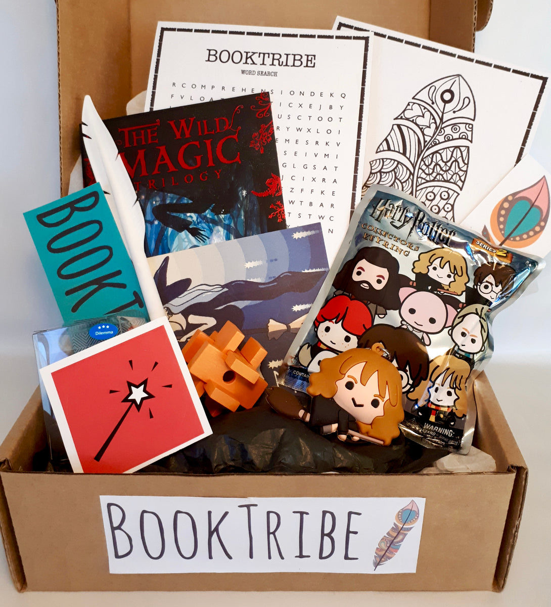 BookTribe book subscription box for children aged 8 -12.  Make reading fun.