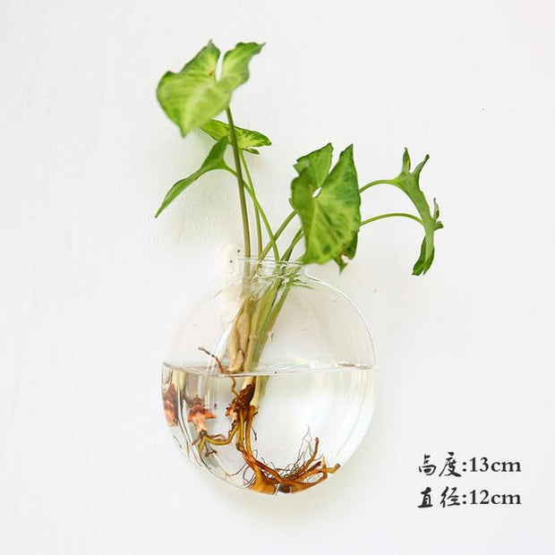 Hanging Glass Flower Vase