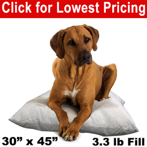"Dog Bed , Pet Bed Insert - 30"" x 45""  (3.3lbs)"
