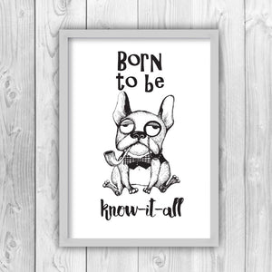 Born To Be Know It All English Bull Dog Print