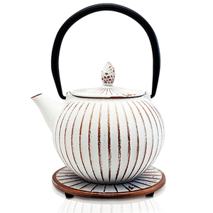 Cast Iron Teapot - Anyang White