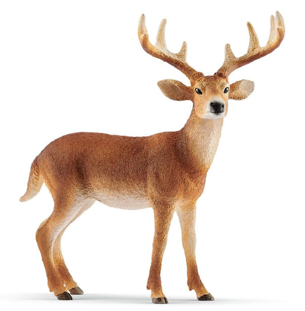 Schleich White-Tailed Deer