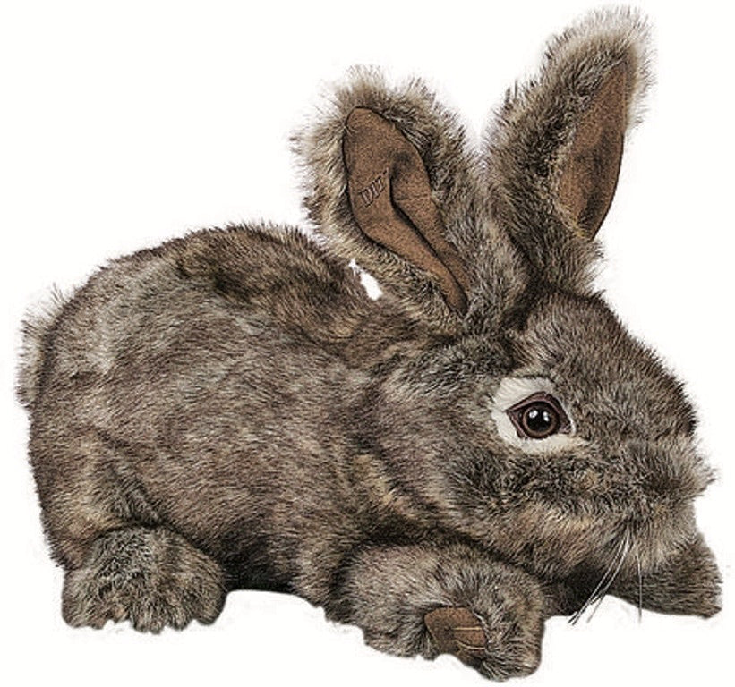 Natural Colored Rabbit