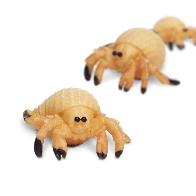 Hermit Crab - Good Luck Minis
