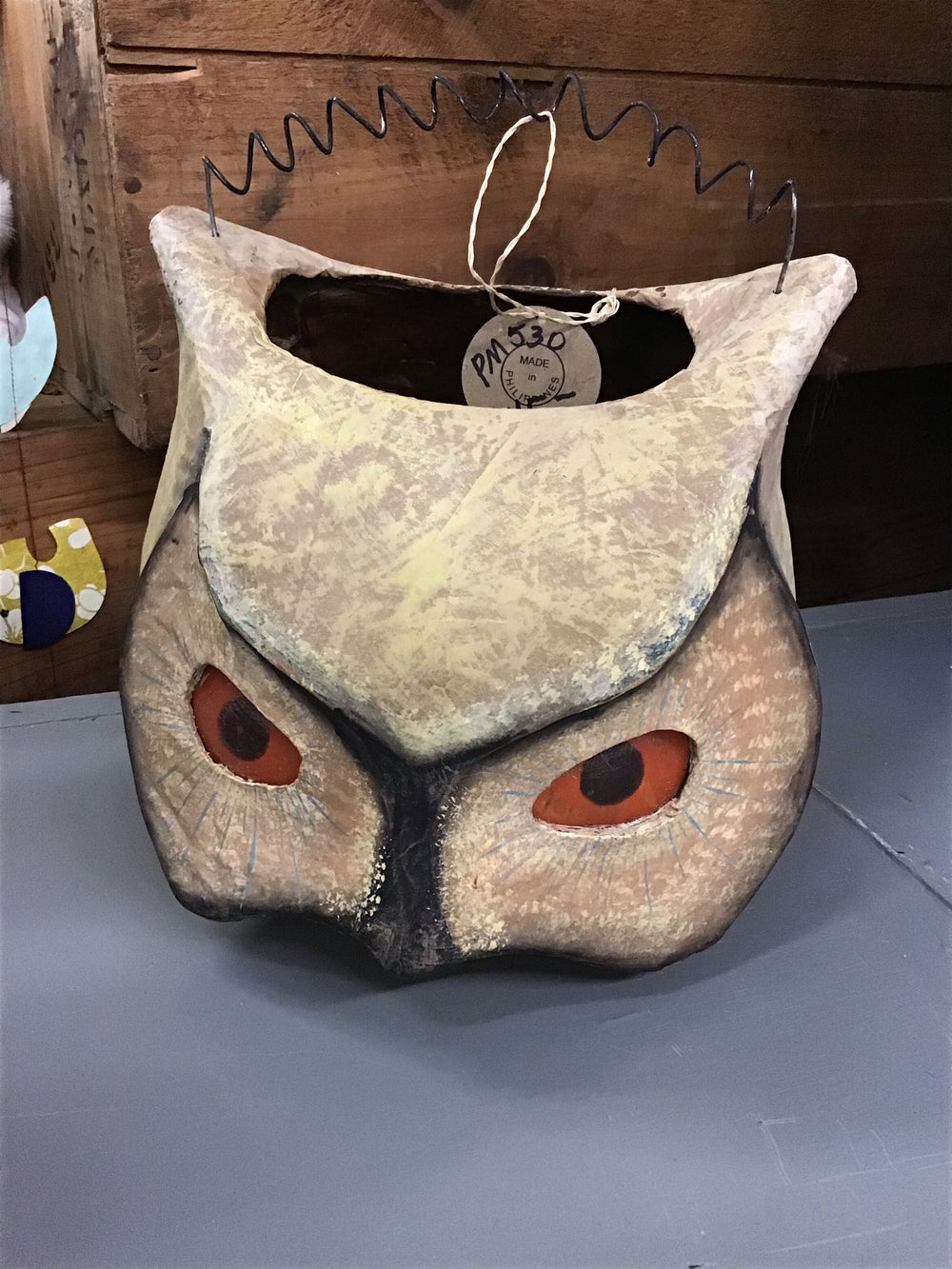 Owl with Orange Eyes Candy Bucket