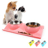 Double Feeder Dog Bowl