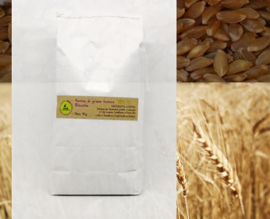 Flour Risciola 1 - soft wheat