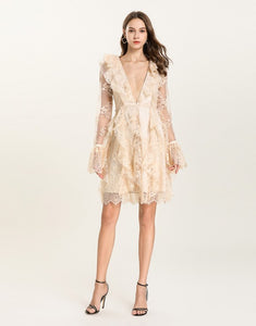 Delicate Nude lace deep V plunge dress