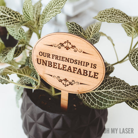 Plant Markers, Best Friend Birthday, Gift for Best Friend Female, Gifts for Friends, Punny Gifts,